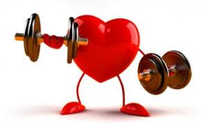sport - cuore che fa i pesi